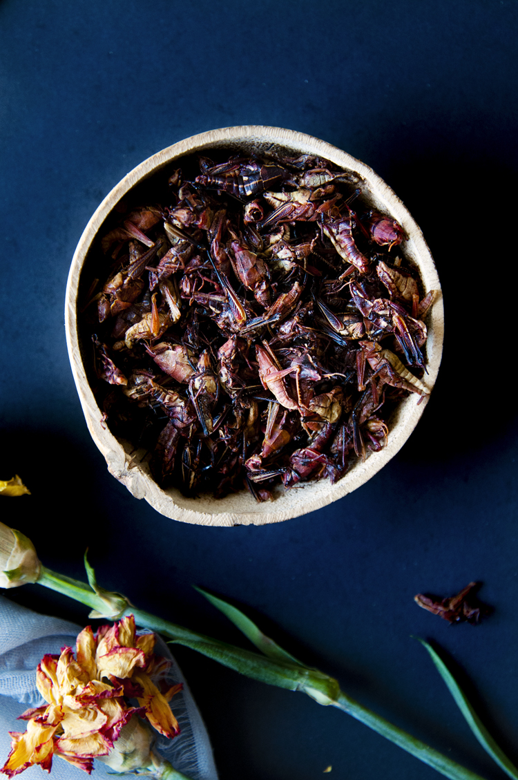 Chapulines comestibles